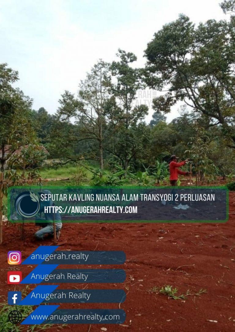 photo6053317359726340937