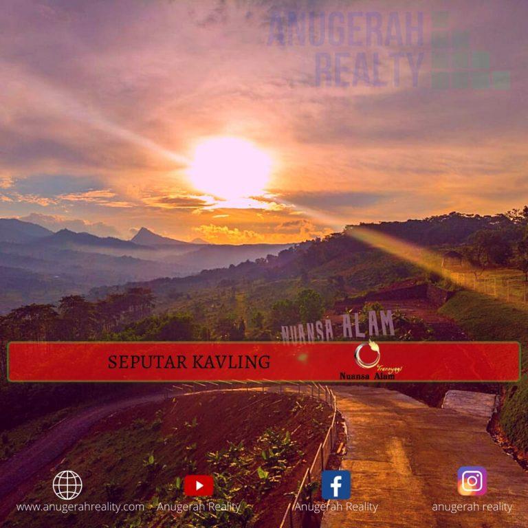 photo6214967881364515842